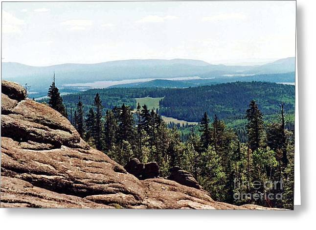 Greeting Card featuring the photograph White Mountains Of Arizona by Juls Adams