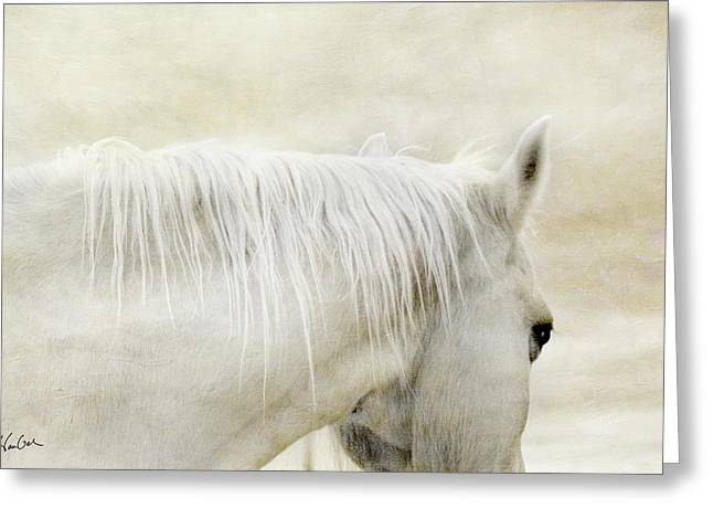 White On White Greeting Card by Christine Hauber