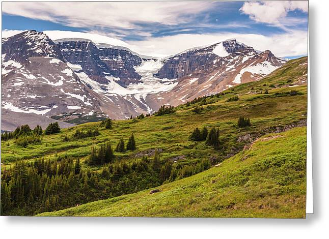 Greeting Card featuring the photograph Wilcox Pass by Mark Mille