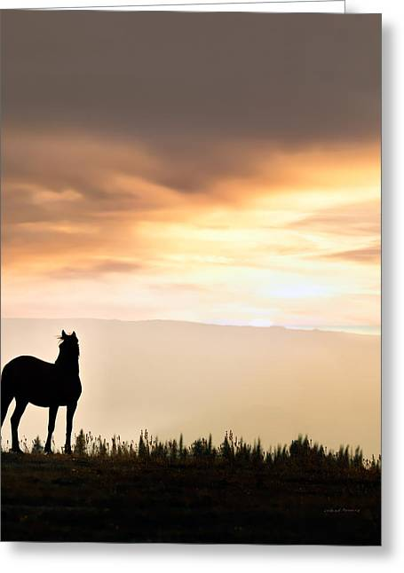 Wild Horse Sunset Greeting Card by Leland D Howard