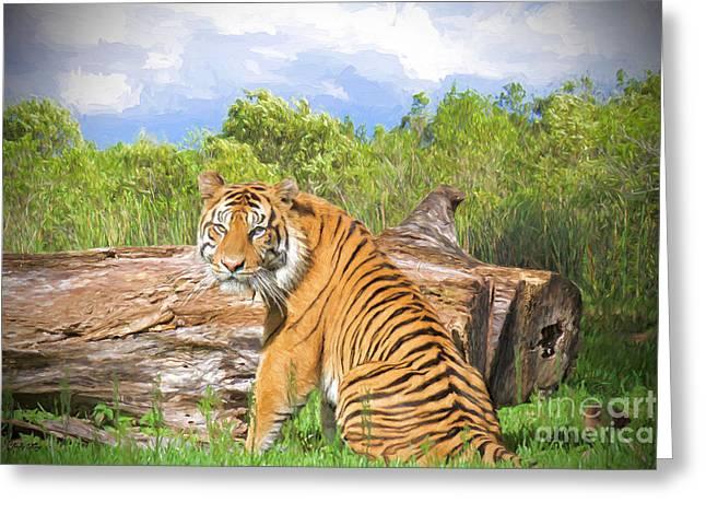 Wild Kingdom Greeting Card by Judy Kay