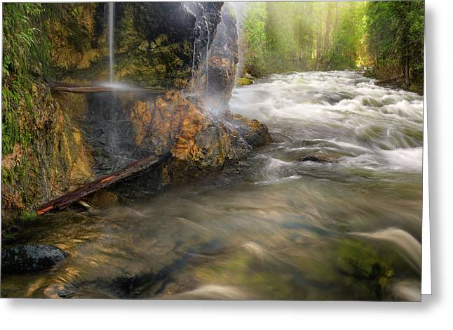 Greeting Card featuring the photograph Wilderness Hot Springs by Leland D Howard