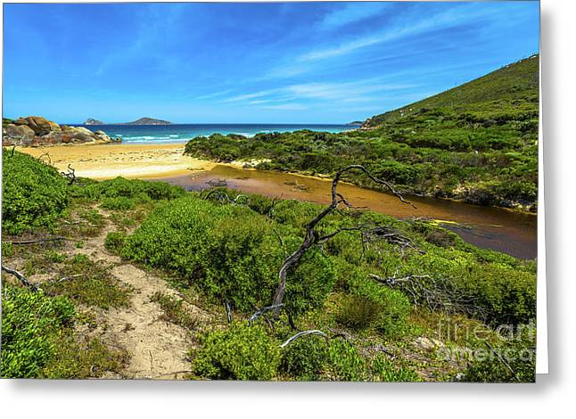 Wilsons Promontory National Park Greeting Card