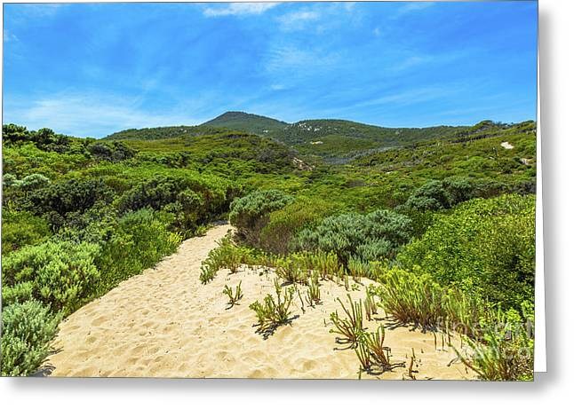 Wilsons Promontory Victoria Greeting Card