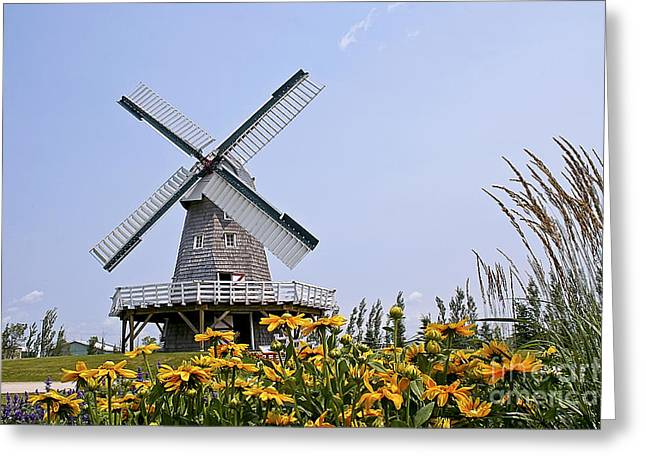 Windmill Greeting Card by Teresa Zieba