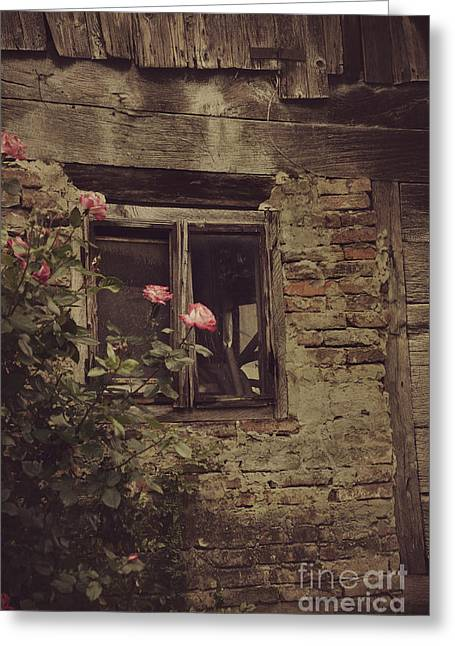Window Greeting Card by Mythja Photography