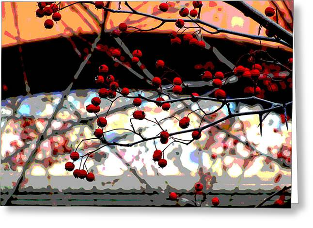 Window Series Greeting Card by Ginger Geftakys
