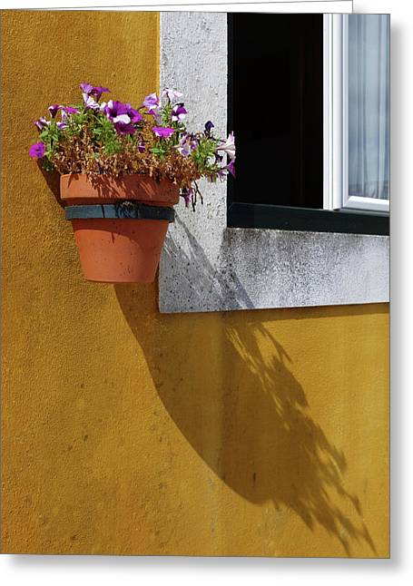 Window With Vases Greeting Card