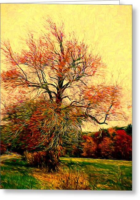 Windy Autumn Tree Greeting Card by Lilia D