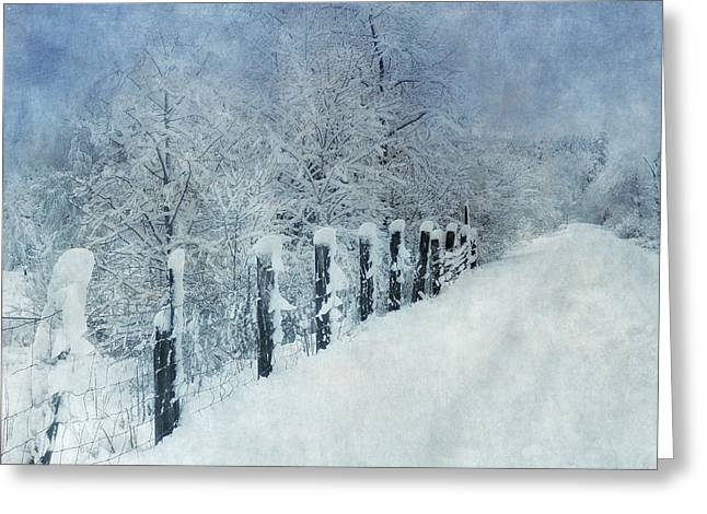 Greeting Card featuring the photograph Winter by Angie Vogel