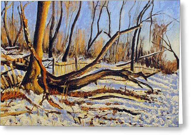 Winter Fence Greeting Card by Vladimir Kezerashvili
