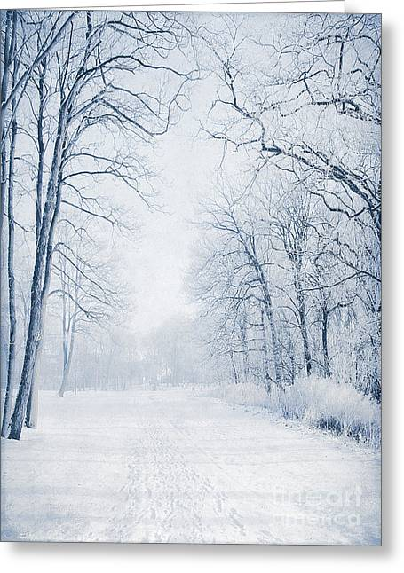 Winter Path Greeting Card