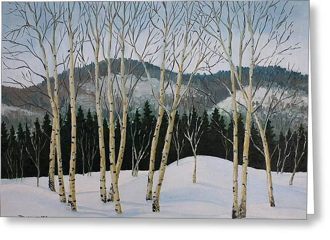 Winter Poplars Greeting Card
