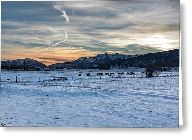 Winter Range Greeting Card