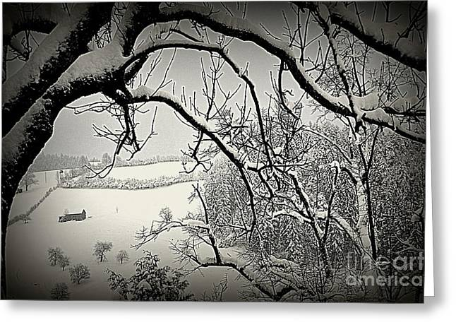 Greeting Card featuring the photograph Winter Scene In Switzerland by Susanne Van Hulst