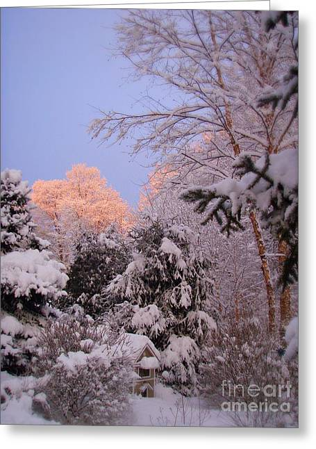 Greeting Card featuring the photograph Winter Sunrise by Kristine Nora