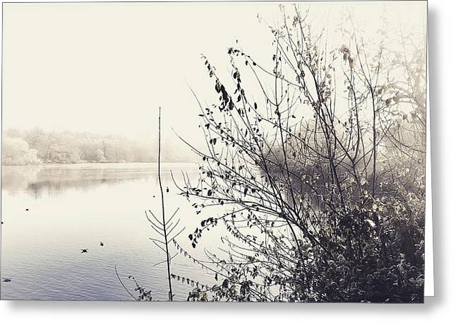Winter's Morning At The Mote  Greeting Card by Stuart Ellesmere