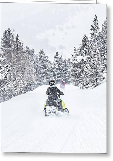 Winter's Way Greeting Card