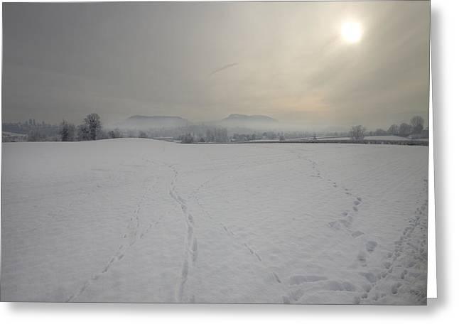 Wintery Landscape Greeting Card by Angel  Tarantella