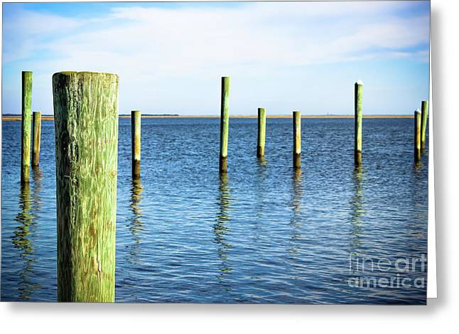 Greeting Card featuring the photograph Wood Pilings by Colleen Kammerer