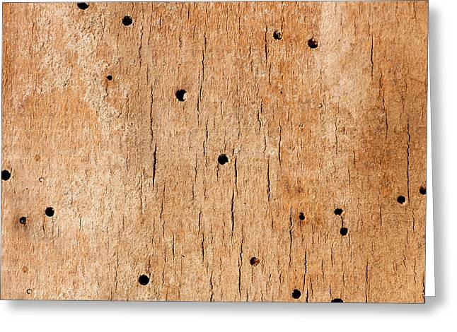 Wooden Texture Greeting Card by Boyan Dimitrov