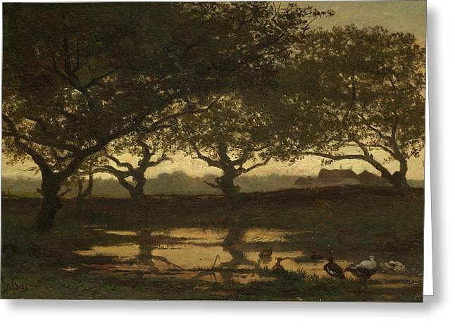 Woodland Pond At Sunset Greeting Card