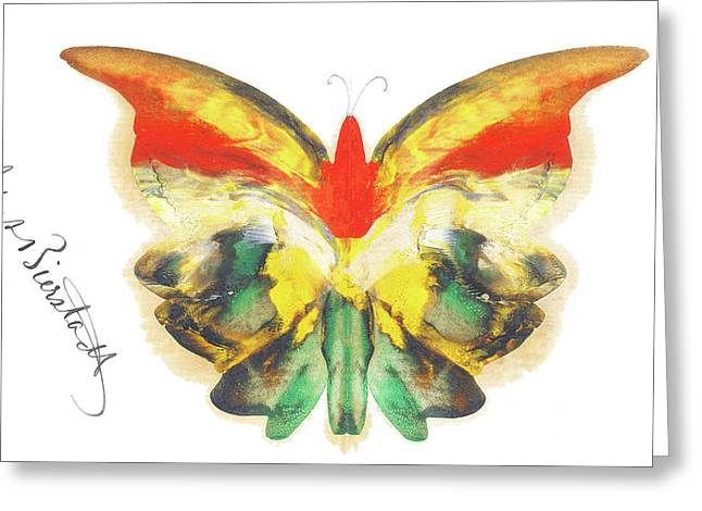 Yellow Butterfly Greeting Card by Albert Bierstadt