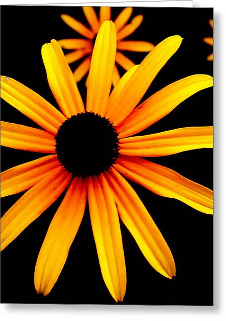 Yellow Flower Greeting Card by Robert Scauzillo