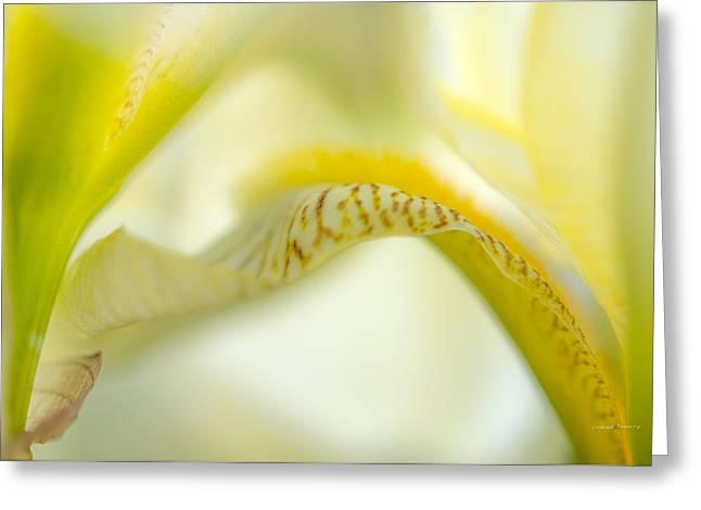 Yellow Iris 6 Greeting Card by Leland D Howard