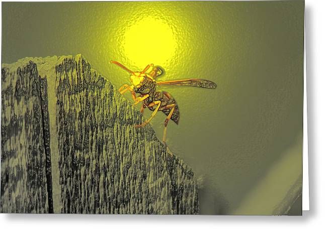Yellow Jacket Blues Greeting Card