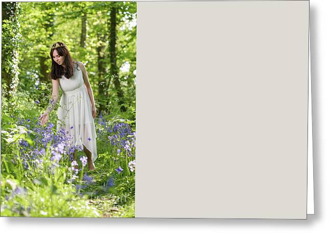 Young Woman In Bluebell Woodland Greeting Card by Amanda Elwell