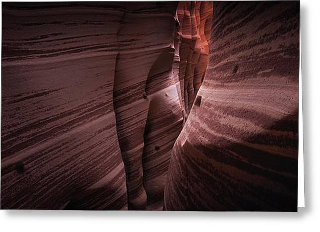 Greeting Card featuring the photograph Zebra Canyon by Edgars Erglis