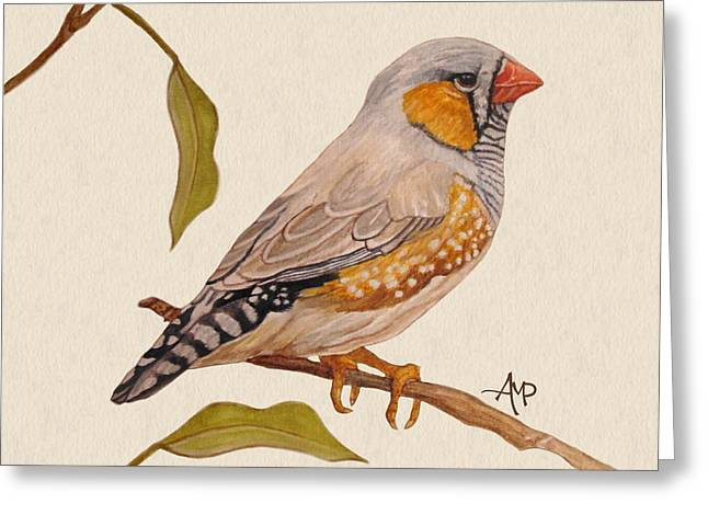 Zebra Finch Greeting Card by Angeles M Pomata