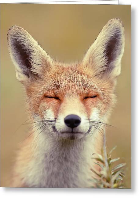 Zen Fox Series - Happy Fox Is Happy Greeting Card by Roeselien Raimond