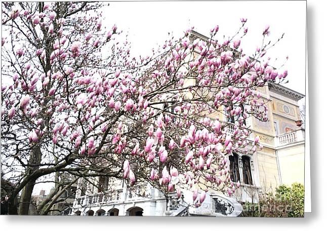 zurich- Villa patumbah Greeting Card