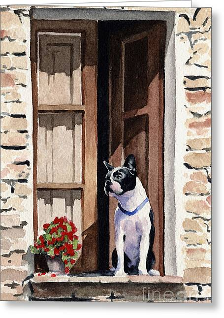Boston Terrier Greeting Card by David Rogers
