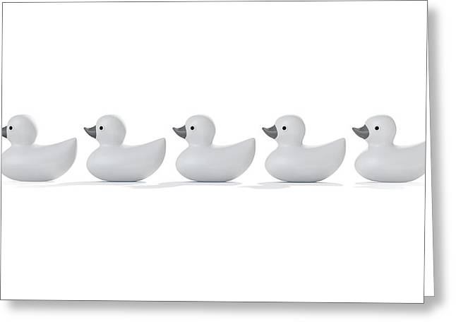 Ducks In A Row Greeting Card by Allan Swart