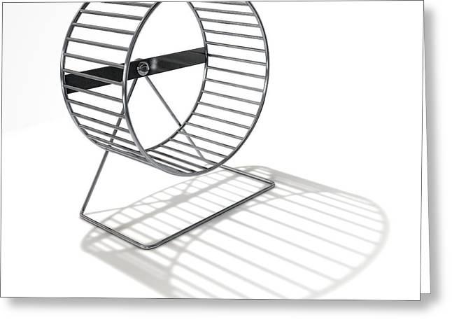 Hamster Wheel Empty Greeting Card