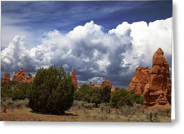 Kodachrome Basin Greeting Card by Mark Smith