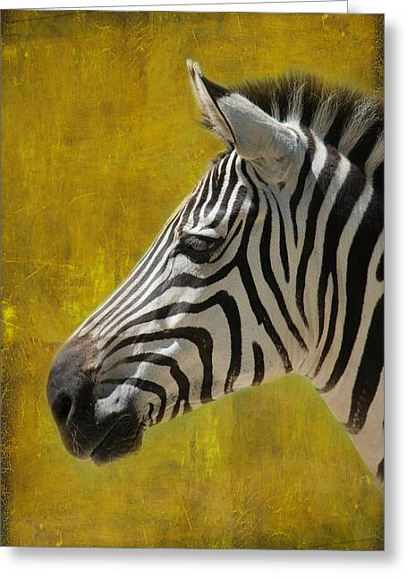 Zebra Greeting Card by Heike Hultsch