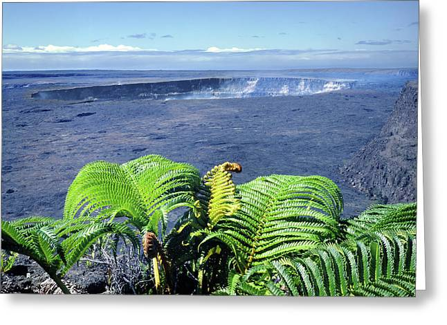 Greeting Card featuring the photograph 100960 Ferns And Halemaumau Crater Kilauea Caldera Hi by Ed Cooper Photography