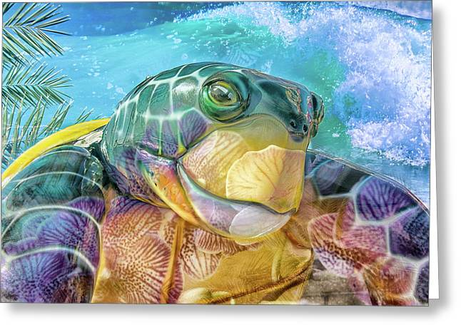 10730 Mr Tortoise Greeting Card