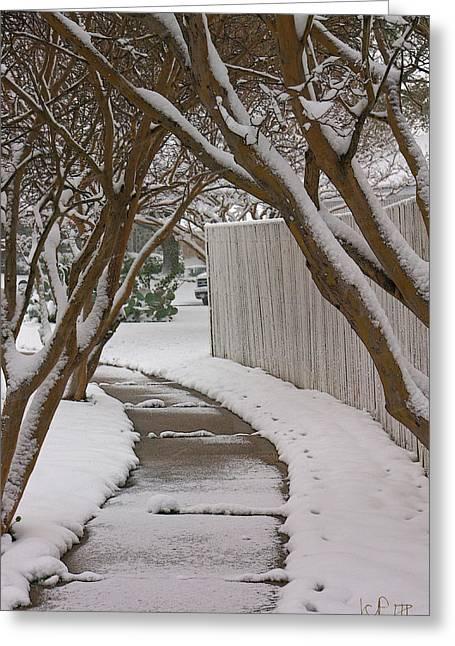10735 Crepe Myrtles In Snow Greeting Card