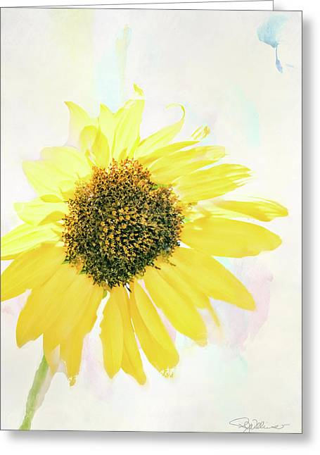 10845 Sunflower Greeting Card by Pamela Williams