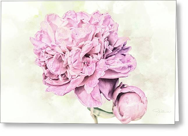 10861 Spring Peony Greeting Card by Pamela Williams