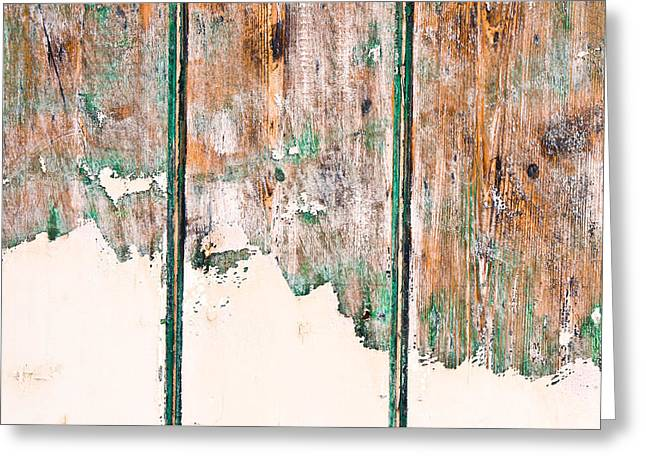 Green Wood Greeting Card by Tom Gowanlock