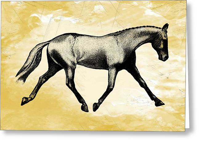 Lengthen Trot Stencil Greeting Card by JAMART Photography
