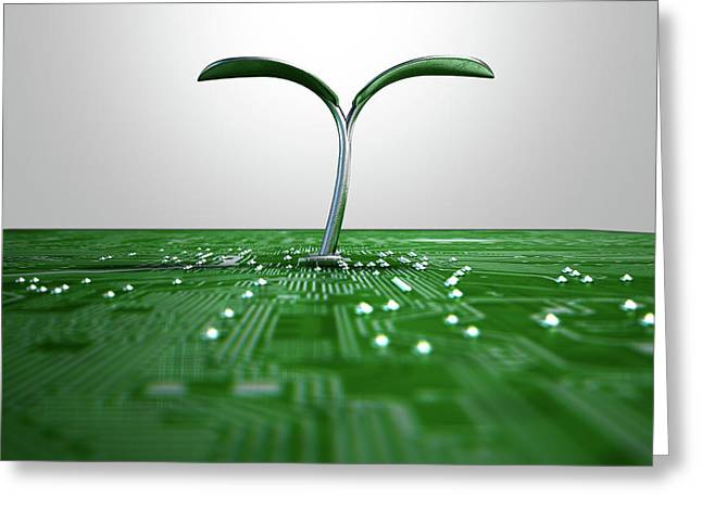 Macro Circuit Board With Futuristic Plant Greeting Card by Allan Swart