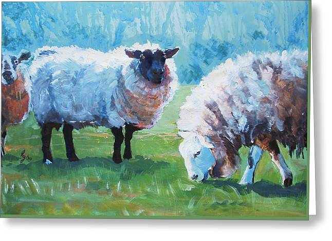 Sheep Greeting Card