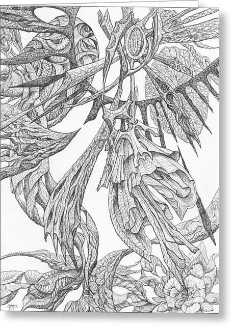 Organic Drawings Greeting Cards - 1110-5 Greeting Card by Charles Cater